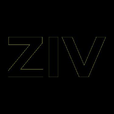 Ziv Gallery